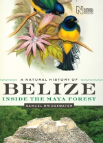 Belize_Natural_History_Bridgwater3