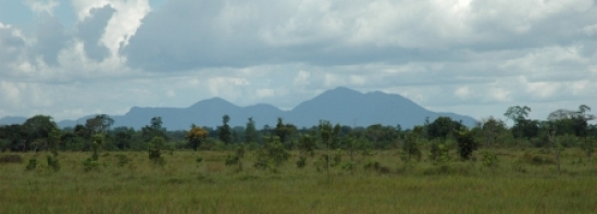 north_rupununi_tropicalbio2